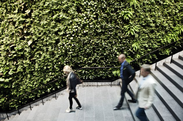 Green Fortune-SWEDEN-gf_261208_02