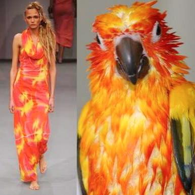 Fashion Innovation Ideas