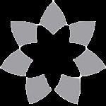 Logo_Project-Acumen_dian-hasan-branding_www.projectacumen.com_US-2