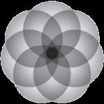 Logo_Project-Acumen_dian-hasan-branding_www.projectacumen.com_US-4
