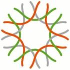 Logo_California-Academy-of-Schiences_www.calacademy.org_dian-hasan-branding_SF-CA-US-2
