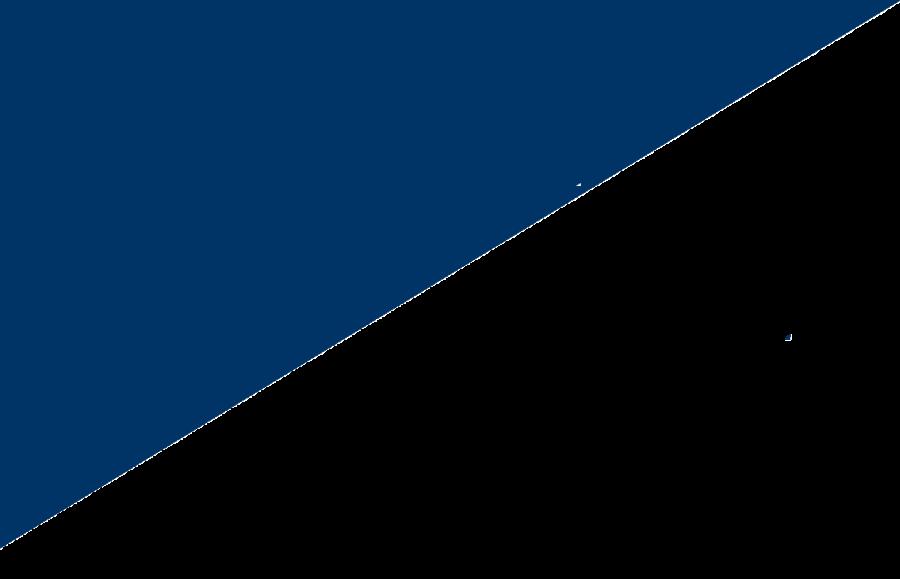 Principal Financial Group Logo 31
