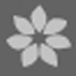 Logo_Shinsegae-Dept-Store_dian-hasan-branding_KR-10