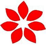 Logo_Shinsegae-Dept-Store_dian-hasan-branding_KR-7
