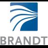Logo_Brandt_dian-hasan-branding_US-1