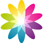 Logo_Bright-Theory-digital-biz-solutions_www.brighttheory.com_dian-hasan-branding_US-2