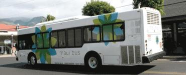 Logo_Maui-Bus-Co_dian-hasan-branding_HI-US-4