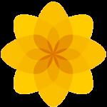Logo_Plaid_dian-hasan-branding_www.englishplaidcymru.org_UK-2