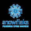 Logo_snowflake-web-design_dian-hasan-branding_CH-1