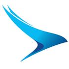 Logo_citywing-budget-airlines_dian-hasan-branding_UK-2