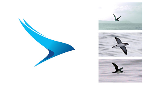 Logo_citywing-budget-airlines_dian-hasan-branding_UK-3