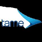 Logo_TAME-Ecuador-Airlines_dian-hasan-branding_EC-1