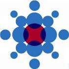 Logo_San-Diego-Blood-Bank_dian-hasan-branding_US-2