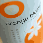 Logo_O-Olive-Oil-&-Wine-Vinegar_www.ooliveoil.com_dian-hasan_US-12