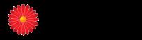 Logo_Dr-Malladi_www.drmalladi.com_dian-hasan-branding_US-1