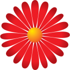 Logo_Dr-Malladi_www.drmalladi.com_dian-hasan-branding_US-3