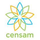Logo_IRG-Censam_dian-hasan-branding_1