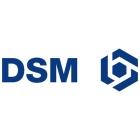 Logo_DSM_OLD-LOGO_www.goodlogo.comextended.infodsm-logo-2754_dian-hasan-branding_NL-3