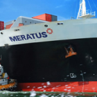 Logo_Meratus-Shipping-Line_www.meratusline.com_dian-hasan-branding_Jkt-ID-4